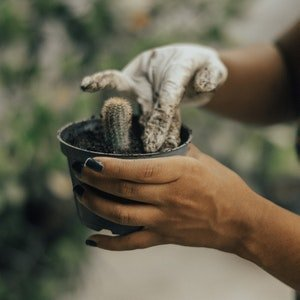 List Of Income Generating Activities Nurturing